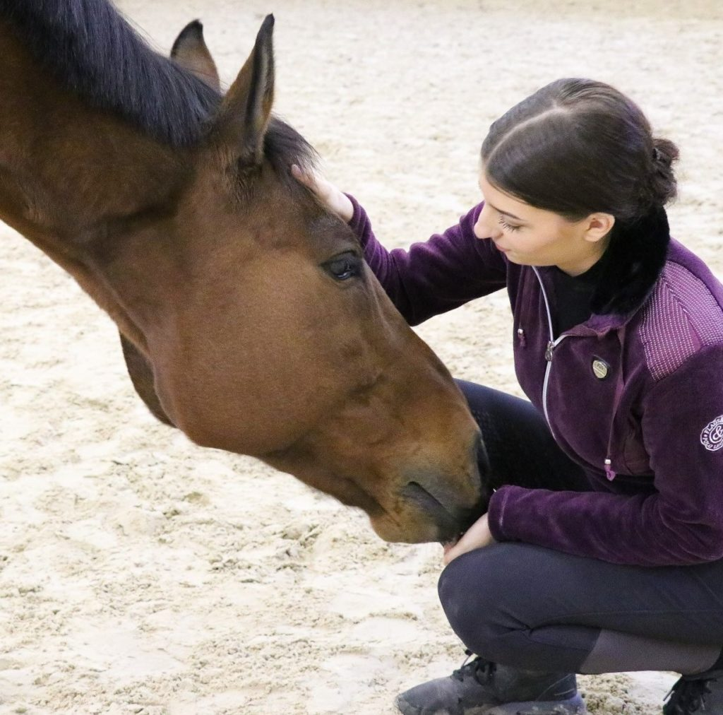Relation homme cheval
